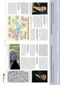 Für mehr Lebensqualität in Oberösterreich - Raiffeisen - Seite 3