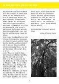 Nr. 110 / Juni – August 2012 - Ev.- luth. Vicelin - Kirchengemeinde ... - Seite 3