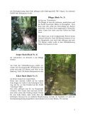 Wegbeschreibung der Radtour des Monats September 2009 Thema ... - Page 5