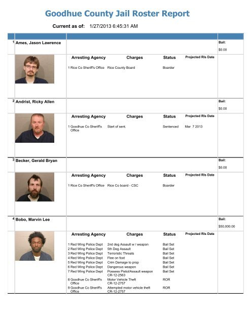 Jail Roster Internet - Goodhue County