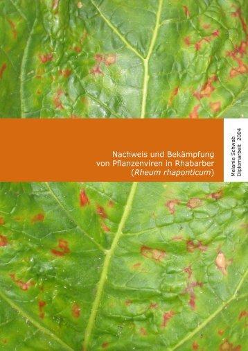 Nachweis und Bekämpfung von Pflanzenviren in Rhabarber ...