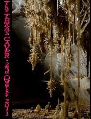 2011 Quarter 2 (PDF) 4.5 MB - Texas Speleological Association