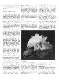 Mineralien und Astrologie - Seite 2