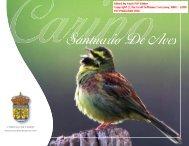 CONCELLO DE CARIÑO www.concellodecarino.com
