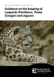 Leopards and Pumas A5 Leaflet.indd - Department of the Environment