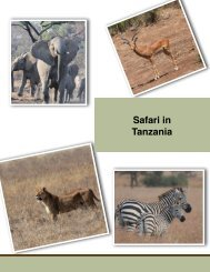 An African Safari by Bob Holdsworth - Eco Travel Africa