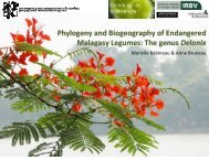 Phylogeny and Biogeography of Endangered Malagasy ... - QCBS