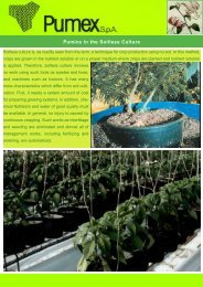 Substrate for Soilless Cultivation in Agriculture