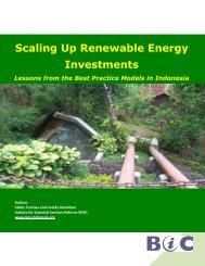 Scaling Up Renewable Energy Investments - IESR Indonesia