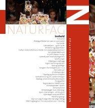 Magasinet Naturfag 2009 - Nasjonalt senter for kunst og kultur i ...