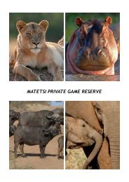 MATETSI PRIVATE GAME RESERVE - 360 Grad Reisen