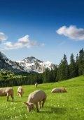 Geschäftsbericht 2008 von Proviande - Proviande Schweizer Fleisch - Seite 7