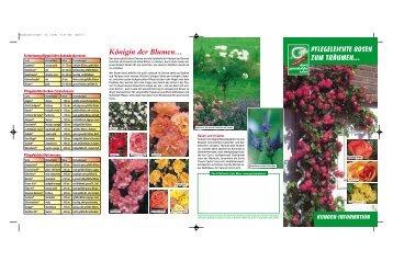 Merkblatt Rosen (PDF) - Widmer Gartenbau AG