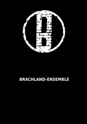 BRACHLAND-ENSEMBLE - dominik breuer