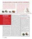 MERCATO - Gras Calce - Page 4