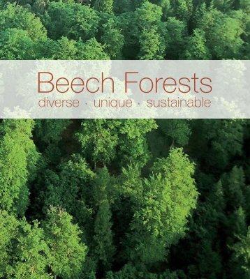 Beech forests - Deutscher Forstwirtschaftsrat