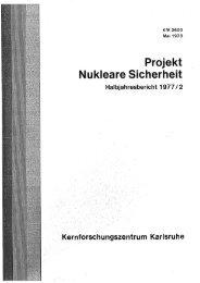 Projekt Nukleare Sicherheit
