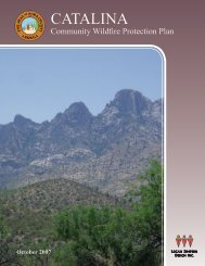 CATALINA - AZ State Forestry Division