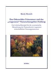 Das Odenwälder Felsenmeer und das - KOBRA - Universität Kassel
