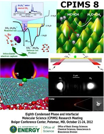 Eighth Condensed Phase and Interfacial Molecular Science (CPIMS)