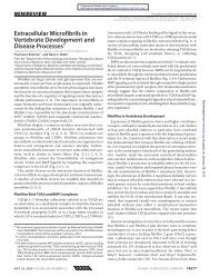 Extracellular Microfibrils in Vertebrate Development and Disease ...
