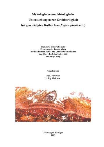 Mykologische und histologische Untersuchungen zur Grobborkigkeit ...