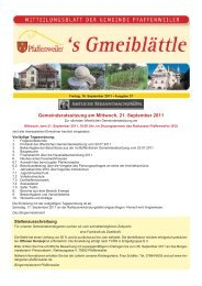 Gemeinderatssitzung am Mittwoch, 21 ... - Suedlicht GmbH