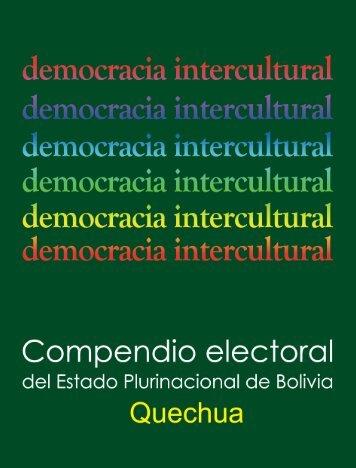 Preámbulo - Tribunal Supremo Electoral