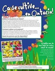 Cultive-t-on le poivron en Ontario? - Algoma Public Health