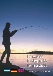 Fiskeguide Fishing Guide Fishing Guide - Tingsryds kommun