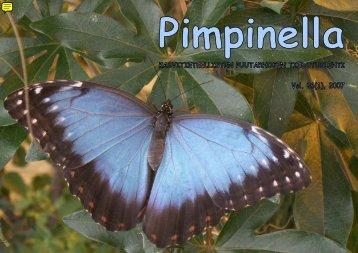 Pimpinella 26(1), 2007 - Botania