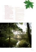 EINE SYMPHONIE DER SINNE - grafenegg - Seite 5