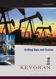 Drilling Rigs and Cranes - Lagoa America