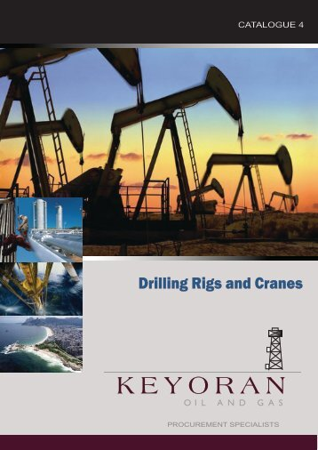 Drilling Rigs and Cranes - Lagoa America