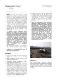Doradztwo dla Klienta: Ropa i Gaz - WS Atkins - Polska Sp. z oo