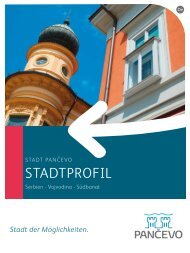 STADTPROFIL - Pancevo.rs