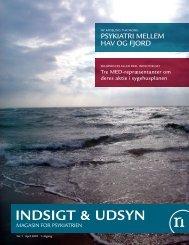 Indsigt & Udsyn - April 2007 - Psykiatrien - Region Nordjylland