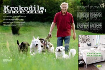 Presse - Individuelle Hundebetreuung Bernd H. Pierstorff - fairdog