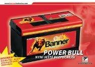 POWER BULL
