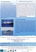 4 th newsletter, June 2012 - Page 2
