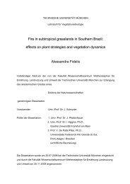 TECHNISCHE UNIVERSITÄT MÜNCHEN Lehrstuhl für ...