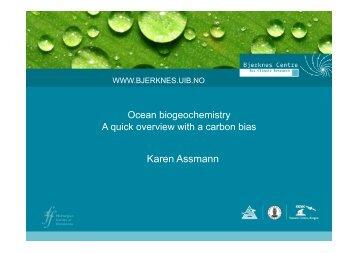 Karen Assmann - ISSMES
