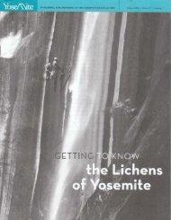 the Lichens of Yosemite - Yosemite Online