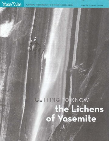 the Lichens of Yosemite - Yosemite Online