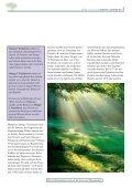 Yams Extrakt - La Vie - Page 5
