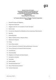 Allgemeine Vertragsbedingungen (AVB) für Consulting ... - GIZ