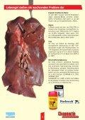 Die erste Closantel-Ivermectin ... - PRO ZOON Pharmazeutika - Seite 3