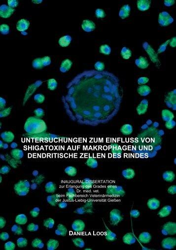 Dokument 1.pdf - Zur Giessener Elektronischen Bibliothek - Justus ...