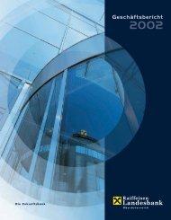 Jahresabschluss 2002 (PDF, 1,95 MB) - Raiffeisenlandesbank ...