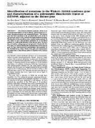 Identification of mutations in the Wiskott-Aldrich syndrome gene and ...